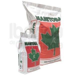 Mxt. Canarios T3 Platino Manitoba 1 kg