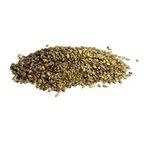 Las semillas de cardo mariano proceden de la planta del mismo nombre que crece de manera natural en la mayor parte de Europa. Junto con otros tipos de cardo, el cardo mariano forma parte de la dieta natural de los jilgueros y es una de sus semillas preferidas. Además de formar parte de su dieta, las propiedades del cardo mariano lo hacen especialmente recomendable tanto para el jilguero como para canarios y otros pájaros silvestres de alimentación parecida. Las semillas de cardo mariano son muy ricas en flavonoides que son pigmentos naturales que protegen a las plantas pero que tienen propiedades beneficiosas para los animales y en este caso para las aves. Propiedades del cardo mariano: Acción antioxidante que protegen las células de los daños causados por los radicales libres que tienden a oxidar las estructuras celulares. Propiedades anticancerosas. Favorecen la circulación sanguínea y el funcionamiento del corazón. Disminuyen los niveles de colesterol Protegen el hígado, el estómago y la vesícula de las toxinas. Fuente de ácidos grasos que son una importante fuente de energía. En canarios y jilgueros el uso del cardo mariano estimula el apetito, ayuda a restituir y mantener el equilibrio intestinal y es un protector natural de hígado cuando se administran colorantes para acentuar los tonos rojos del plumaje.