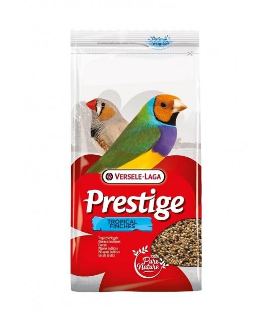 prestige-exoticos-versele laga,