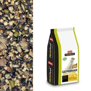semilla germinacion no dore jarad