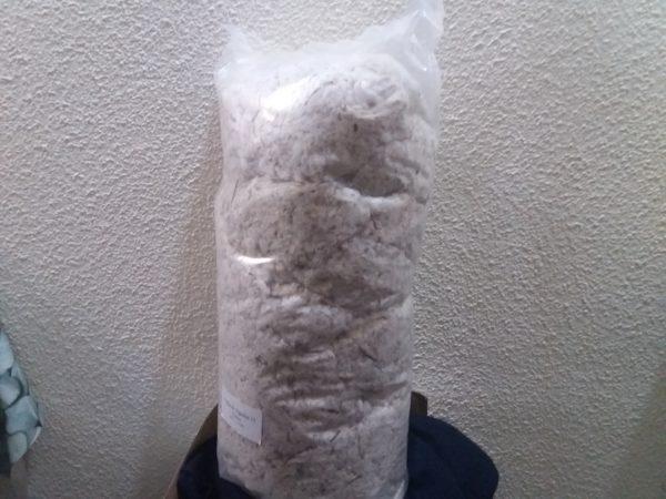 bolsa pelo algodon para mascosta