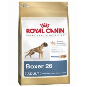royal canin boxer adulto
