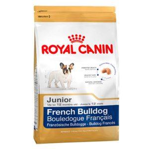buldog frances junior royal canin