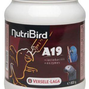 nutribird-a19-para-polluelos_y loros,
