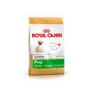 royal-canin-carlino-junior pug,
