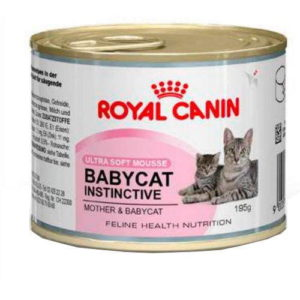 royal canin comida humeda gatos destete baby cat
