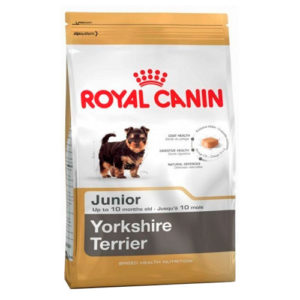 royal cannin Yorkshire terrier junior