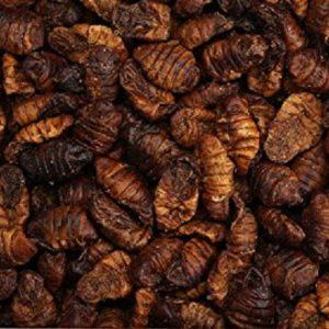 gusano de seda desidratados bolsa al vacio de 300 Gramos